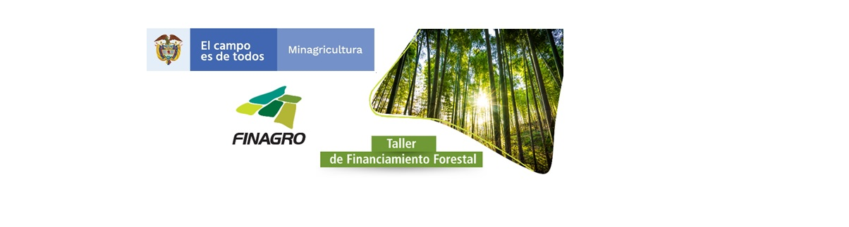 TALLER DE FINANCIAMIENTO FORESTAL