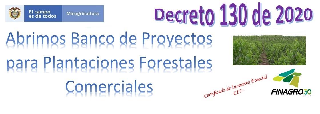Banco de Proyectos Forestales Comerciales –BPPFC