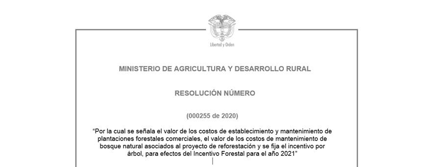 VALORES DEL CIF 2021