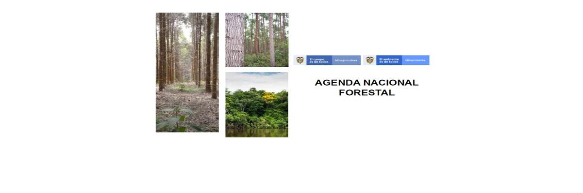 Agenda Forestal concertada entre los Ministerios de Amb